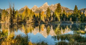 Schwabacher Landing Reflection Royalty Free Stock Images