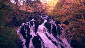 Schwalben-Fälle am Herbst Nationalpark Snowdonia, Großbritannien stock footage