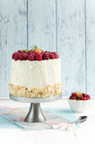 Schwamm-Kuchen mit Himbeere Lizenzfreie Stockbilder