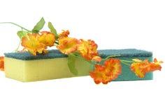 Schwamm und Blume Stockbild