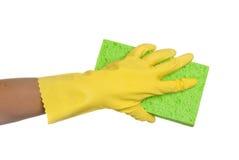 Schwamm und Handschuh Lizenzfreie Stockfotos