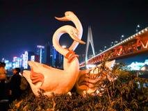 Schwan mit Chongqing Night Scenary Stockbild