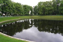 Schwan und Kreise auf dem Wasser Stockfotografie