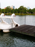 Schwanboot im Park Stockfoto