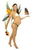 Schwangere Fee Stockbild