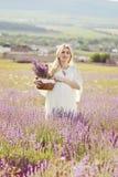 Schwangere Frau auf einem Lavendelgebiet Lizenzfreie Stockfotos
