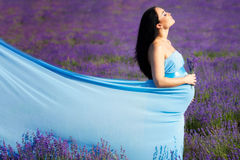 Schwangere Frau auf Lavendelfeld Stockfoto
