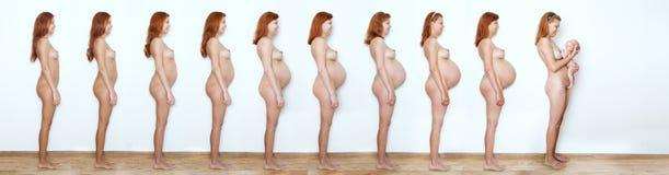 Schwangere Frau der Collage, die anfängt zu beenden, neun Monate, Notfall neun Lizenzfreies Stockfoto