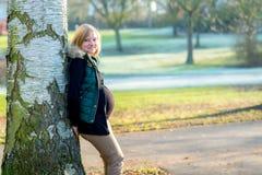 Schwangere Frau der Junge allein der Park Lizenzfreie Stockfotos