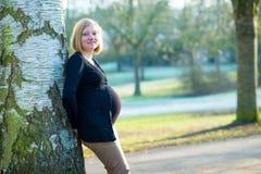 Schwangere Frau der Junge allein der Park Lizenzfreies Stockbild