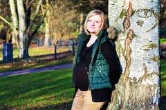 Schwangere Frau der Junge allein der Park Lizenzfreie Stockfotografie
