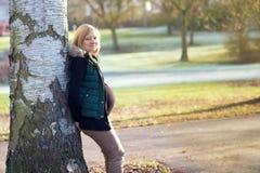 Schwangere Frau der Junge allein im Park Stockbild