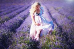 Schwangere Frau der Junge im hellen Kleid gehend durch das Lavendelfeld lizenzfreie stockbilder