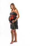 Schwangere Frau, die eine Blume anhält Lizenzfreies Stockfoto
