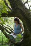 Schwangere Frau, die Laptop im Holz verwendet Lizenzfreie Stockfotos