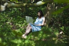 Schwangere Frau, die Laptop im Holz verwendet Stockfotos