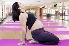 Schwangere Frau, die Yogaübung tut Lizenzfreies Stockbild