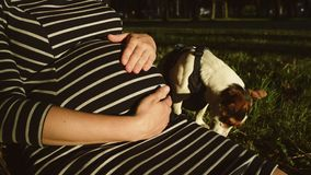 Schwangere Frau in gestreiftem Kleid stock footage