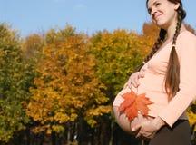 Schwangere Frau u. Herbst Stockfoto