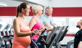 Schwangere Frau und Senioren, die auf Cross-Trainer ausbilden Lizenzfreie Stockbilder