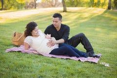 Schwangere hispanische Paare mit Sparschwein auf Bauch im Park Lizenzfreie Stockfotos