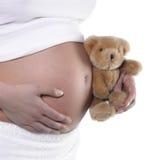 Schwangerer Bauch und Teddybär Stockbild