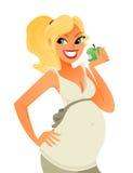 Schwangerer Essenapfel Stockbild