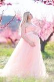 Schwangerer hübscher Garten der Frau im Frühjahr Lizenzfreies Stockfoto