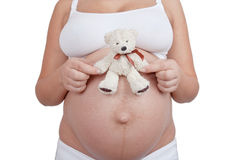 Schwangerer weißer Spielzeugbär des Fraueneinflußes in der Hand Stockfotografie