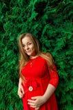 Schwangeres Mädchen mit Kamille Stockfoto