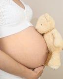 Schwangerschaft-Stoß mit Teddybären stockfotografie