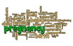 Schwangerschaft-Wort-Luftblase Lizenzfreies Stockbild