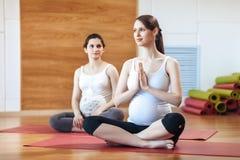 Schwangerschafts-Yoga, Eignungskonzept Torsonahaufnahme schönen jungen schwangeren Yoga zwei modelliert zuhause ausarbeiten Schwa lizenzfreie stockbilder