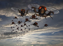 Schwarm von Zikaden im Abend-Himmel Stockbilder