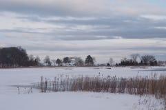 Schwarz-Nebenfluss, wie vom Transportgestellgedenkpark im Winter gesehen stockfotos