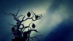 Schwarz-Raben, die auf einem toten Baum an einem bewölkten Tag stehen stock abbildung