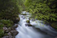 Schwarzbach river. Near Golling Waterfalls in Austria (Long exposure Stock Photo