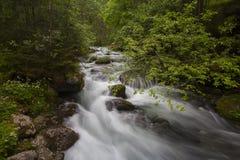 Schwarzbach river. Near Golling Waterfalls in Austria (Long exposure Royalty Free Stock Photo