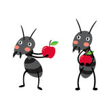 Schwarze Ameisen mit roter Apfelzeichentrickfilm-figur Stockfotografie