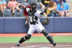 Schwarze Bärn-Baseball WV - erste Jahreszeit Stockfotos