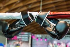 Schwarze Boxhandschuhe verbunden mit Ring Ropes Lizenzfreie Stockfotos