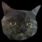 Schwarze Cat Face Low Poly Geometric Stockfotos