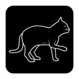 Schwarze Ebene der Katze Lizenzfreies Stockbild