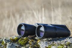 Schwarze Fernglasnahaufnahme in der Sommersaison Morgenuhrzeit in der Steppe stockfoto