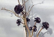 Schwarze hölzerne Blumen, auf Wandhintergrund Stockfotos