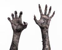 Schwarze Hand des Todes, absolut gehen, Zombiethema, Halloween-Thema, Zombiehände, weißer Hintergrund, Mamahände stockbild
