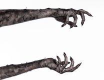 Schwarze Hand des Todes, absolut gehen, Zombiethema, Halloween-Thema, Zombiehände, weißer Hintergrund, Mamahände Stockfotos