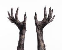 Schwarze Hand des Todes, absolut gehen, Zombiethema, Halloween-Thema, Zombiehände, weißer Hintergrund, Mamahände Lizenzfreie Stockfotografie