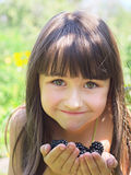 Schwarze Himbeeren Stockfoto