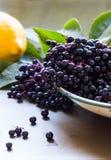 Schwarze Holunderbeeren, Sambucus Nigra, in der Emailschüssel Zitrone und Blätter auf Metallhintergrund Lizenzfreie Stockfotos